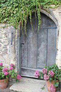 darvena vrata s tsvetya